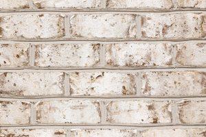 Bradford Hall Tudor - Buff Mortar